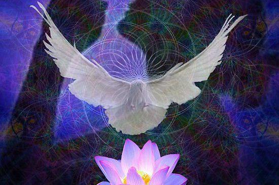 5 Maneiras de se conectar com seus anjos da guarda