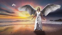 Anjo Número 81 Significado: O sucesso começa com você