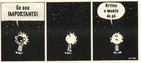 Calvin & Hobbes é uma BD de Bill Watterson (EUA, 1985-95). Calvin é um miúdo de seis anos, que tem como companheiro Hobbes, um tigre sábio e sarcástico, que para alguns não passa de um tigre de peluche.