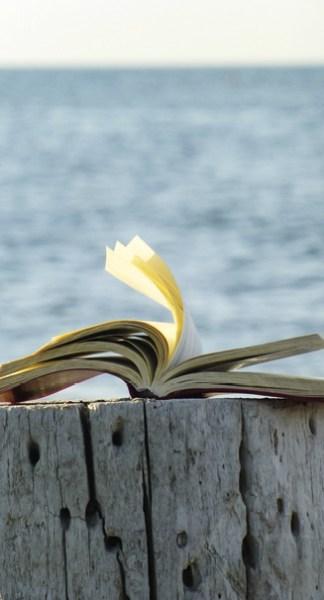 Livro aberto em cima de tronco.