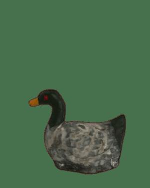 Canard santons de provence