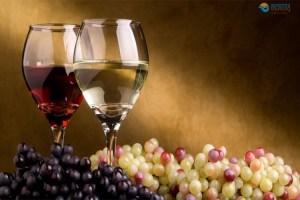 santorini-wine-and-history-tour-a