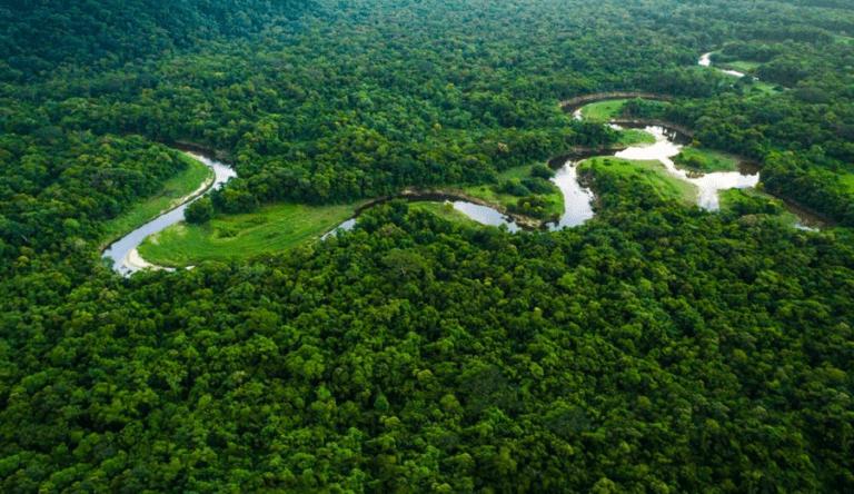 estrada-na-Amazonia-do-Acre-a-fronteira-com-o-Peru-768x444