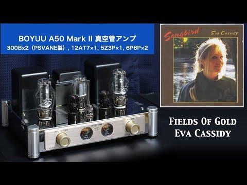 【ATTOZEN】真空管アンプ BOYUU A50 MKII – CD演奏(Fields Of Gold – Eva Cassidy)【2分間デモ】