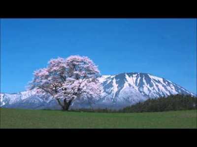 春に聴きたいクラシック音楽10選 (Classical music for Spring season)