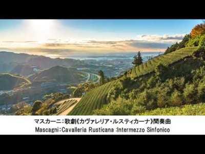 気持ちが落ち着くクラシック名曲集・Feel Calm Classical Music Collection(長時間作業用BGM)
