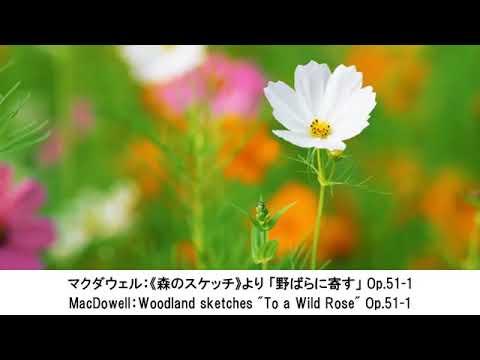 かわいいクラシック名曲集・Pretty Classical Music Collection(長時間作業用BGM)