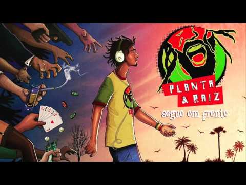 Planta &  Raiz – Disco Completo