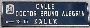 Calle Doctor Bruno Alegría-3