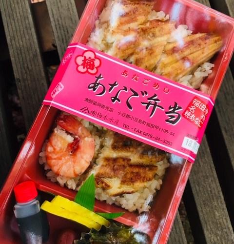 寒霞渓の絶景と美味しいものを探し、小豆島に初上陸~③『梅本水産』の「あなご弁当」~