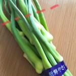 ニョキニョキクルクル、香川の「にんにくの芽」