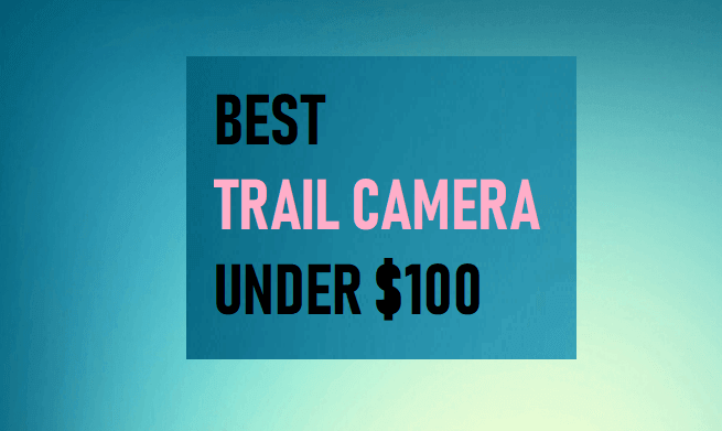 Best Trail Camera Under $100