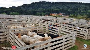 Sindicato Rural_2018 (11)