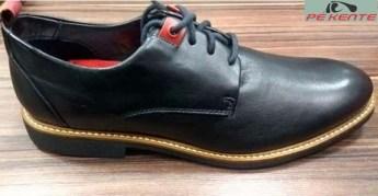 Sapatos-Ferracini-1