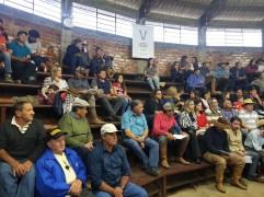 Sindicato Rural 2019 - Feira (5)