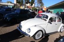 Carros Antigos (74)