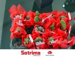 Sotrima - São Joaquim (42)