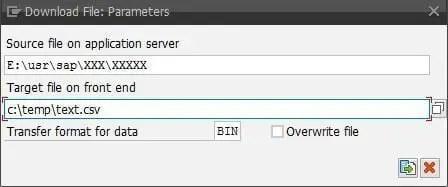 SAP CG3Y_Download ALL11 File