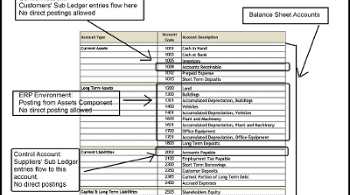 Chart of Accounts, Learn the Nitty Gritty