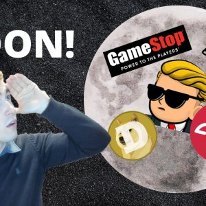 GameStop (GME), AMC, and DogeCoin: My Thoughts...