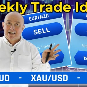 USD and NZD looking strong! EUR weak? This & MORE! (Forex Signals Trade Ideas)