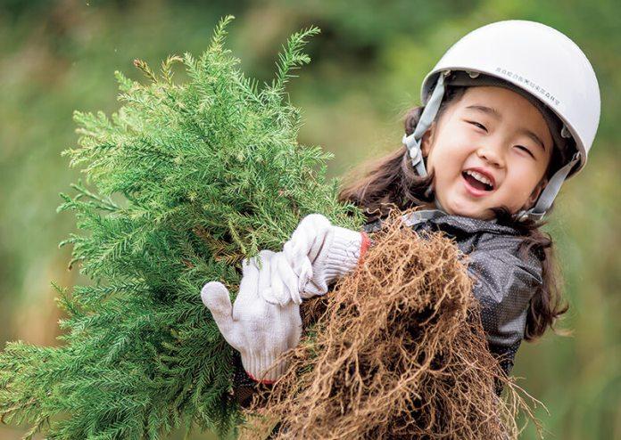 食育体験&木育体験「森を楽しもう」