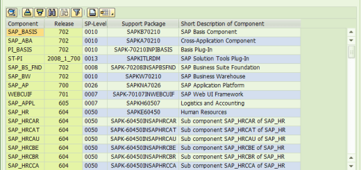 SAP Support Packages