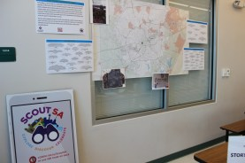 Our Exhibit at Sarah King Elementary using the ScoutSA mobile link.