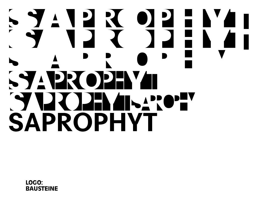 Saprophyt Kit