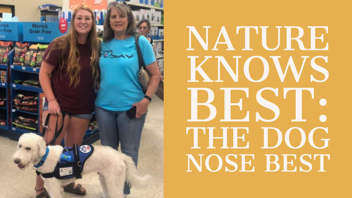 nature-knows-best-featured-dog-nose-best