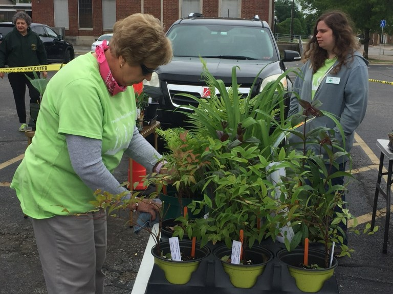 Master Gardener annual plant sale on May 1st