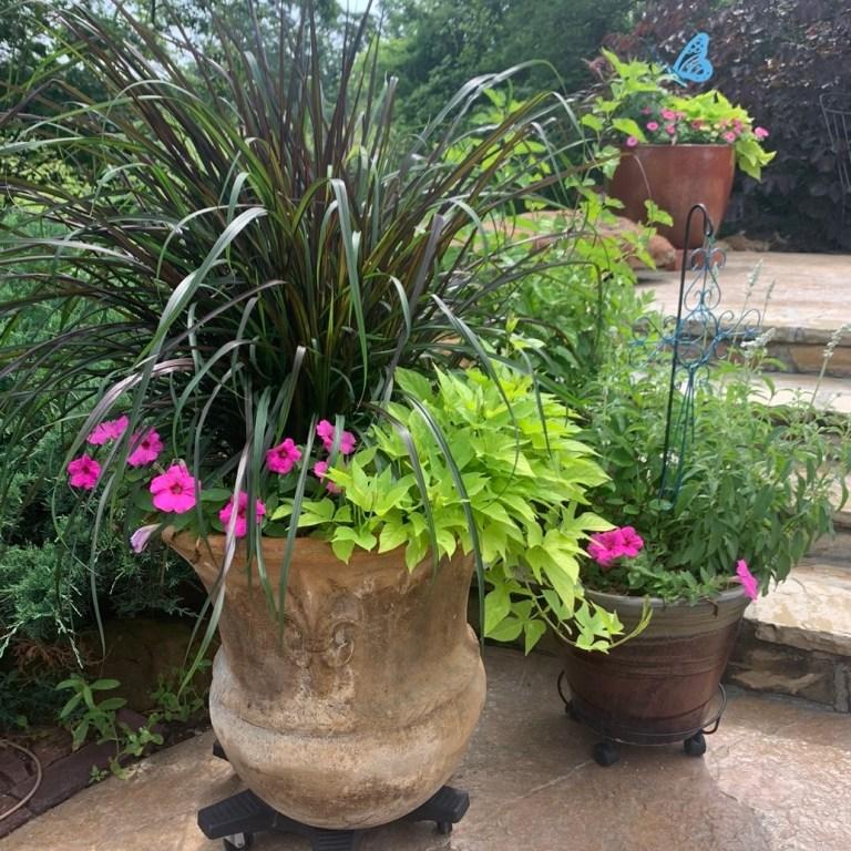 Creek County Master Gardener: Summer Watering Guide