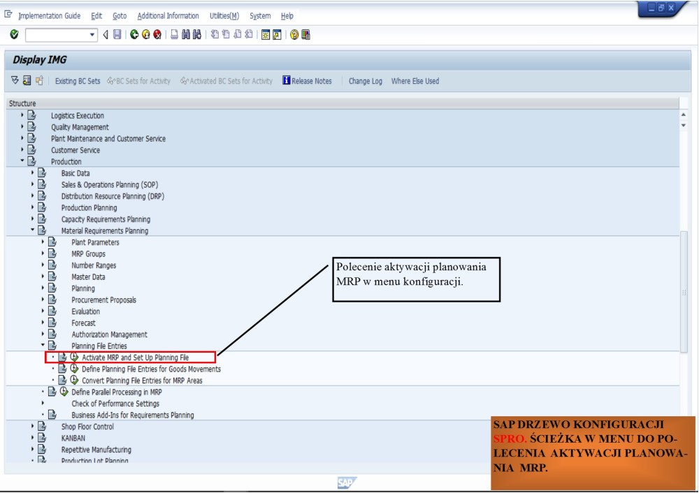 medium resolution of  cie k spro sap reference img production material requirements planning planning file entries activate mrp and set up planning file