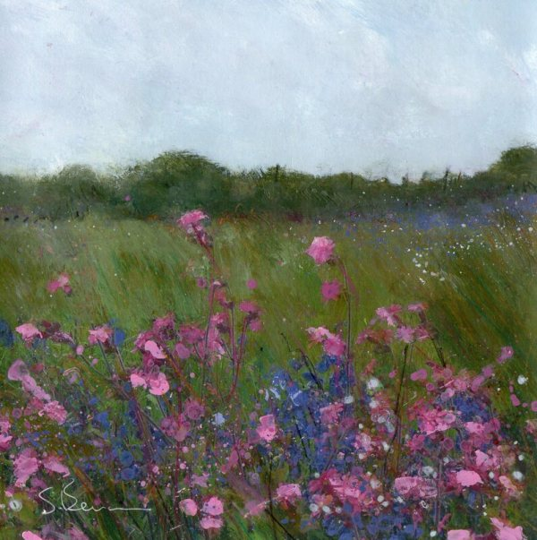 Campion and Bluebells