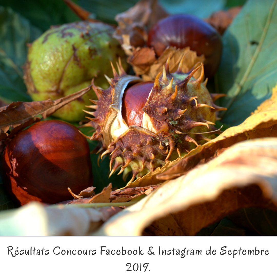 Résultats Concours Facebook & Instagram de Septembre 2019.