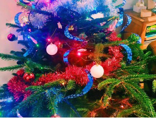 Nos 5 indispensables pour un Noël réussi !