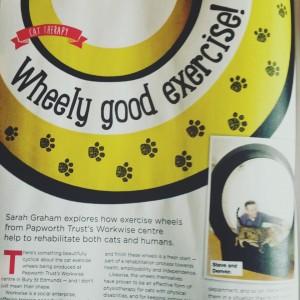 Wheely good exercise!