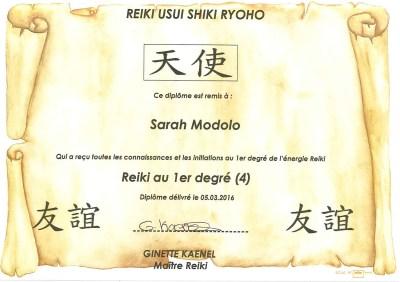 Reiki Usui Shiki Ryoho 1