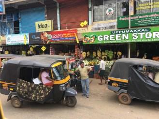 Rickshaws and more rickshaws.