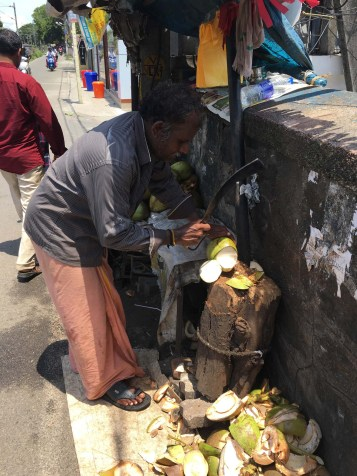 Coconuts for about 80 cents. How this guy still has all 10 fingers is beyond me...
