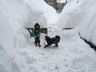 Winter in our backyard