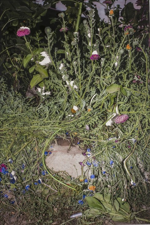 Crushed Flowers, Glow Stick, and a Whip-it - 2015 - 20 x 30 - Chromogenic Print, cut