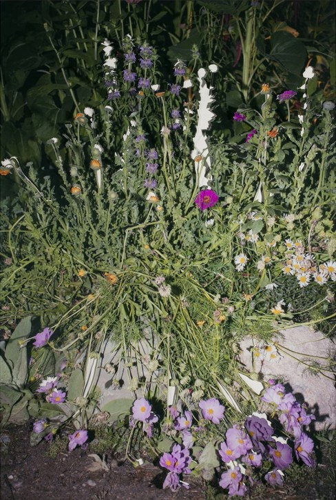 Smashed Flowers - 2015 - 20 x 30 - Chromogenic Print