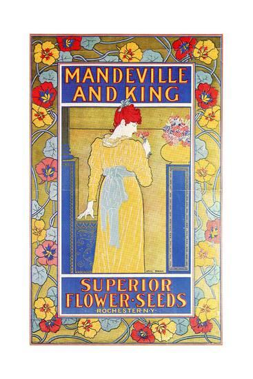 Advertisement for Mandeville and King flower seeds. 1897. Poster.