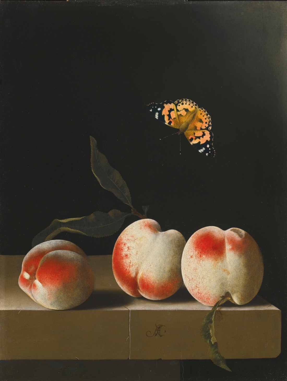 Three peaches on a stone ledge with a Painted Lady butterfly. 1693-95.