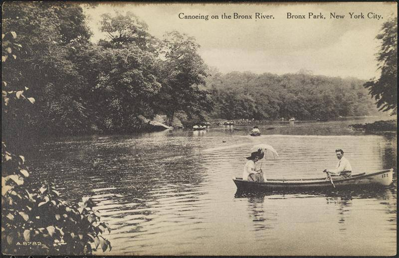 Canoeing on the Bronx River, Bronx Park, New York.