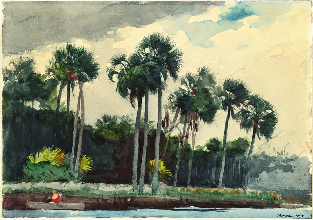 """Red Shirt, Homosassa, Florida."" 1904."