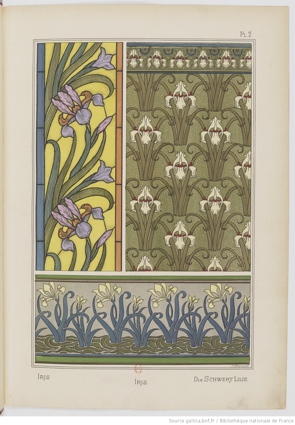 """The Sword Iris."" Plate II. Image 10."