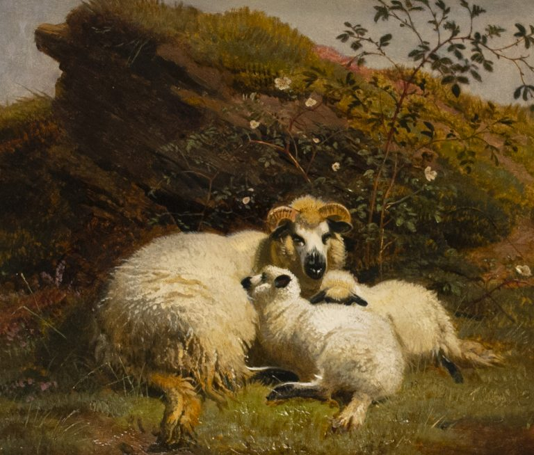 """""""A Family Party - Sheep resting on a Rocky Bank."""" 1850's."""