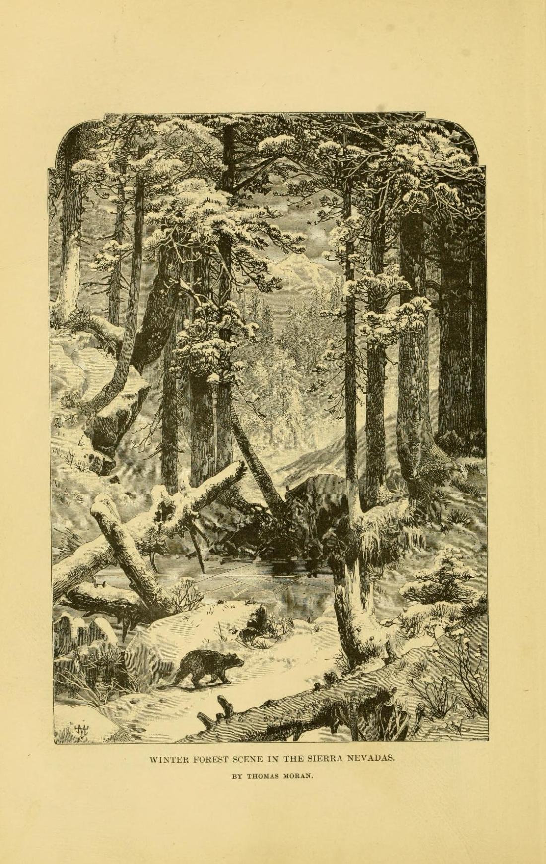 """Winter Forest Scene in the Sierra Nevadas."" Thomas Moran, artist."